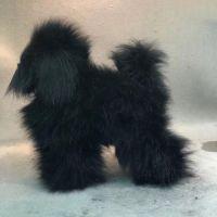 Opawz артикул: OW16-MD01-BODY-BLK Парик для тела манекена собаки MD01 - черный Той-пудель